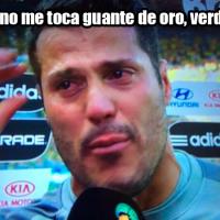 memes alemania brasil 2014
